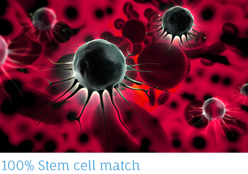 stem-cell-match