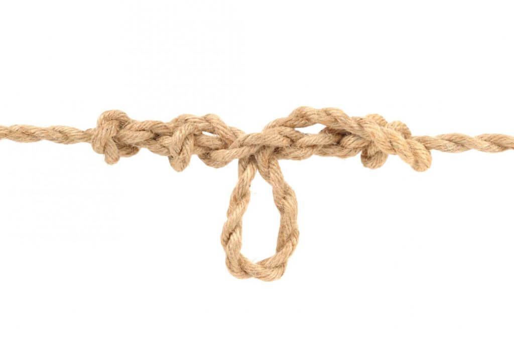 5 Facts About Umbilical Cords