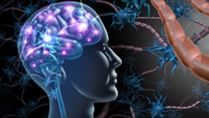 FDA gives approval to cord blood therapy for brain injury.